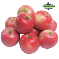 Apple Pink Lady (1kg)