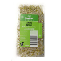 Sprouts Alfalfa (125 grm Pack)