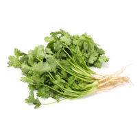 Coriander Fresh (Bunch)