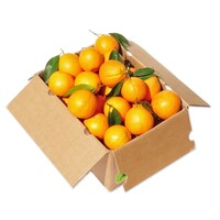 Orange (14kg Juicing Case)