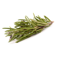 Fresh Rosemary (Bunch)
